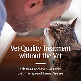Vet Quality Treatment without the vet