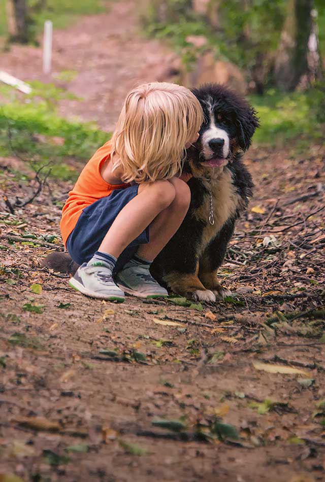 Child playing with a dog on a path