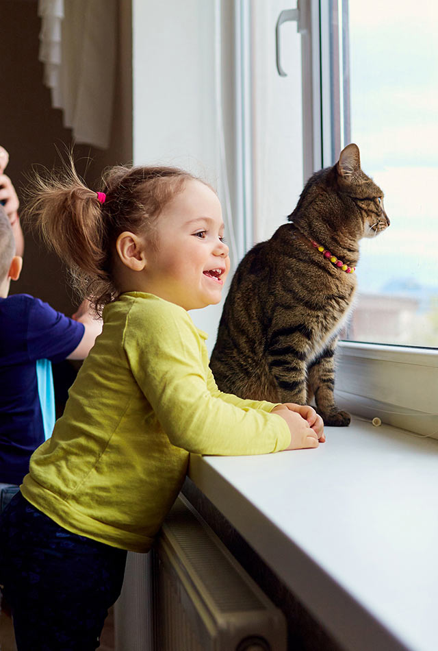 Girl looking out on a window with cat