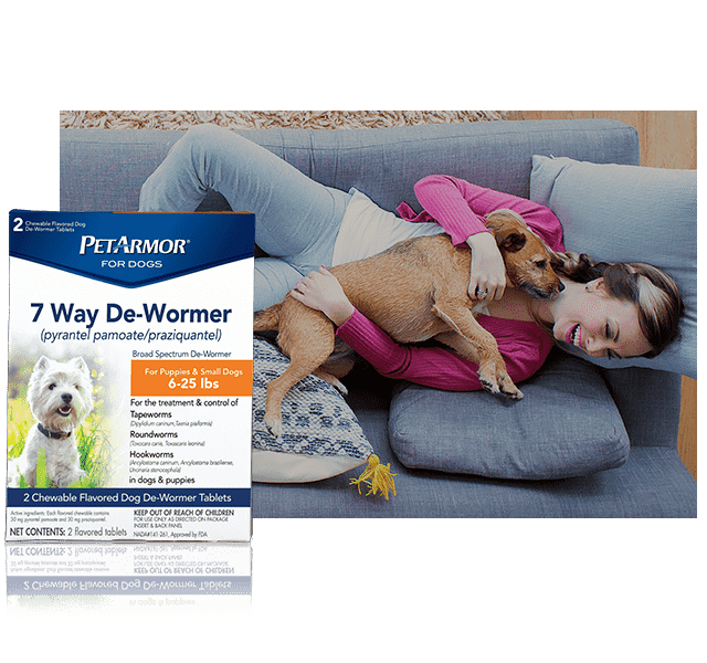 Petarmor Ear Mite And Tick Treatment For Dogs Petarmor