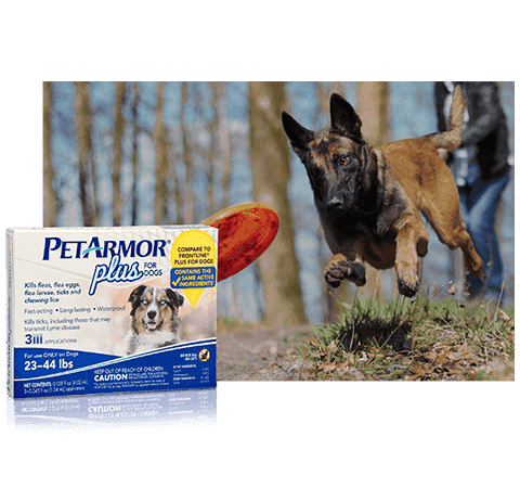 Petarmor Plus For Dogs Vet Quality Flea And Tick Protection Petarmor